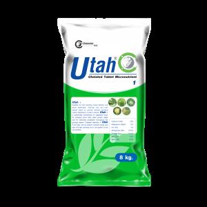 Utah 1 Tablet 1