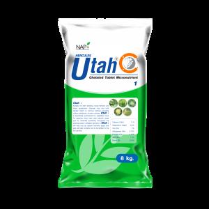 Utah 1 Tablet 2