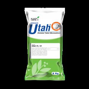 Utah Fe 15