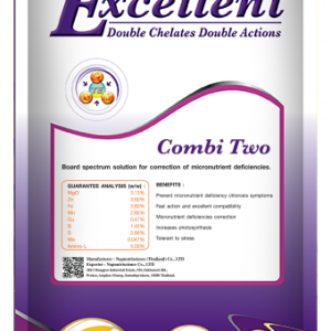 excellent combi Two100 gm