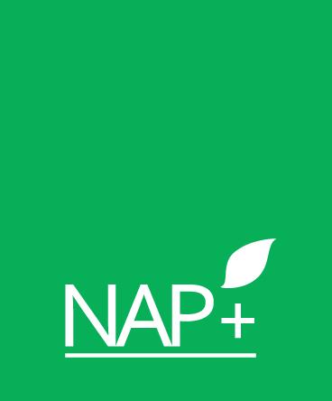 NAP+ logo