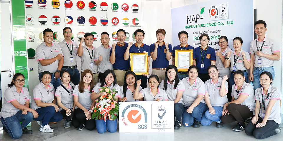 NAP is certified with ISO standards for our best quality of products by SGS